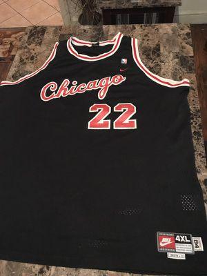 Authentic Chicago Bulls JayWilliams22 Jersey