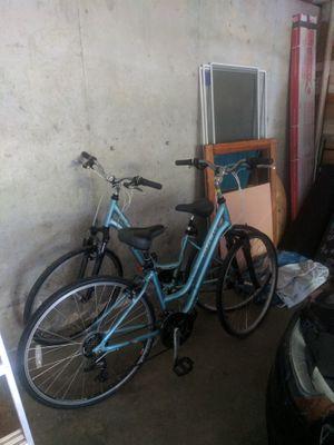 Trek crusier bikes light blue