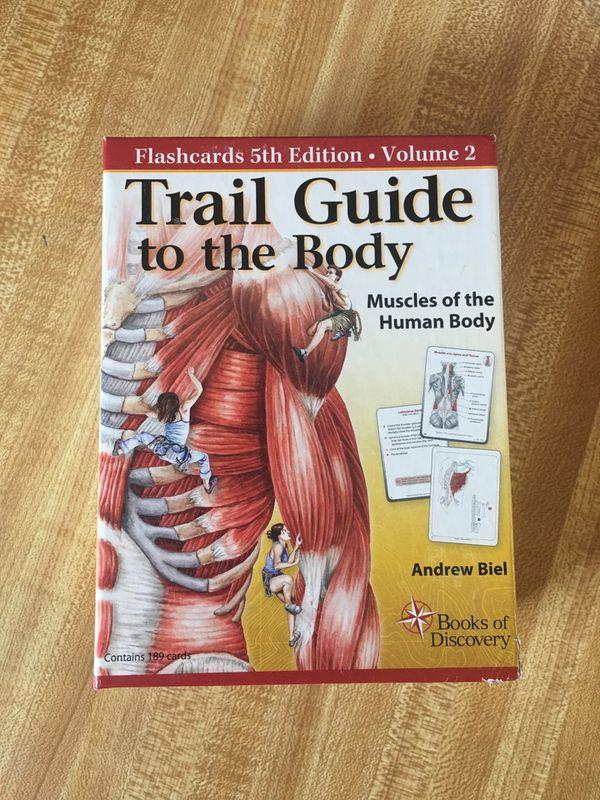 Amazing Free Anatomy Flash Cards Image - Anatomy And Physiology ...