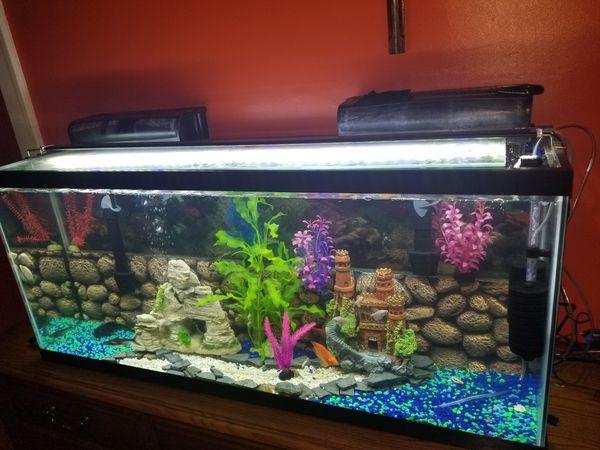 55 gallon fish tank pet supplies in maywood il for Fish tank gallon calculator
