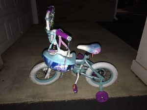 Brand New Frozen Bike