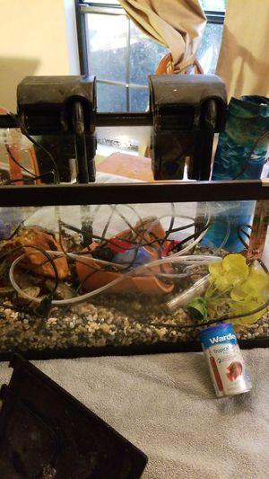 10 Gallon Aquarium Fish Tank