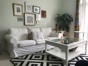 For sell Good Condition sofa, chairs , coffee table , 2 said table rug, plant