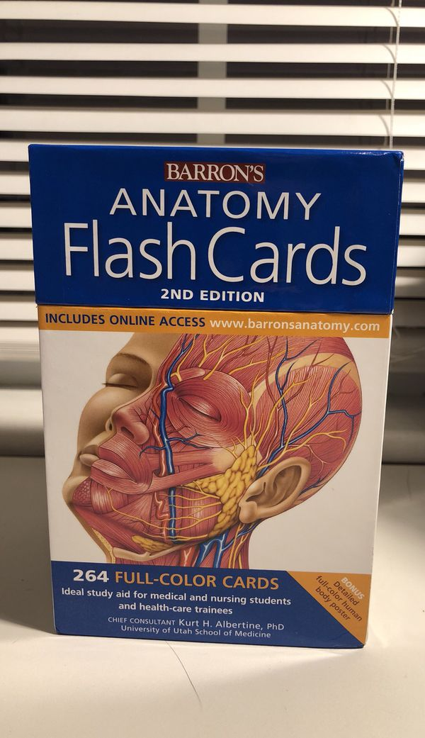 Fantastic Online Anatomy Flash Cards Festooning - Human Anatomy ...