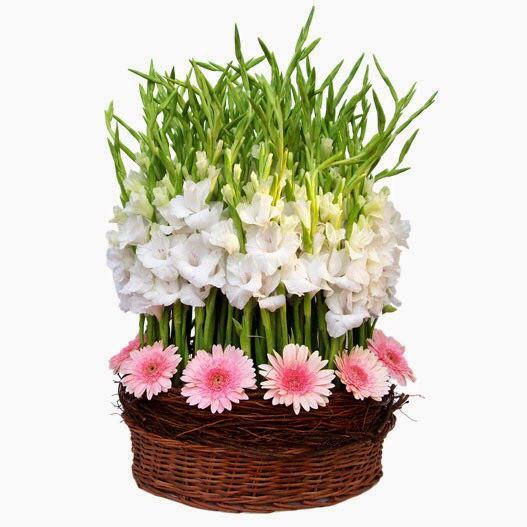 Se le hacen arreglos florales para la reina de la casa 👑 (General ...