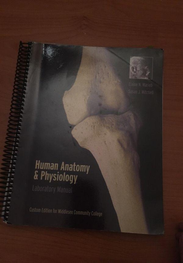 Human anatomy & physiology laboratory manual middlesex community ...