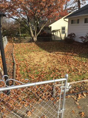 Anyone in need of fall yard work