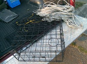 Collapsible crab pot, rope, floaters