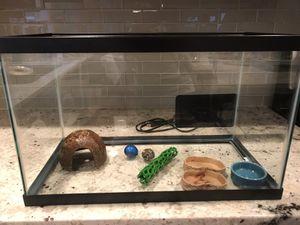 Hermit crab starter kit