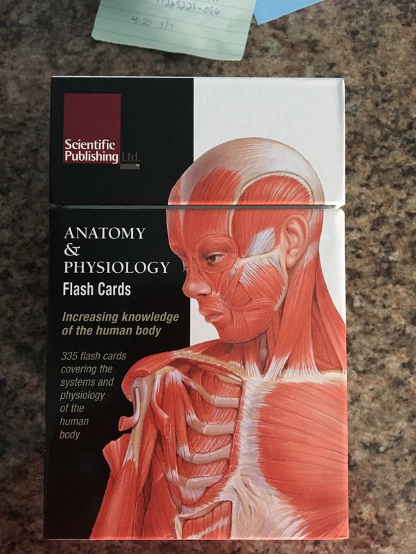 Outstanding Anatomy And Physiology Flash Cards Pattern - Anatomy And ...