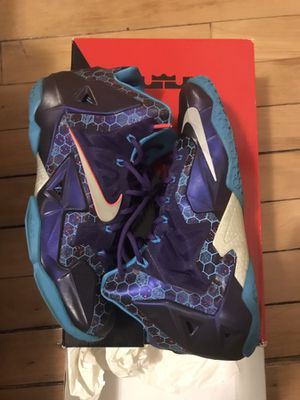 Size 10.5 Men Lebron James