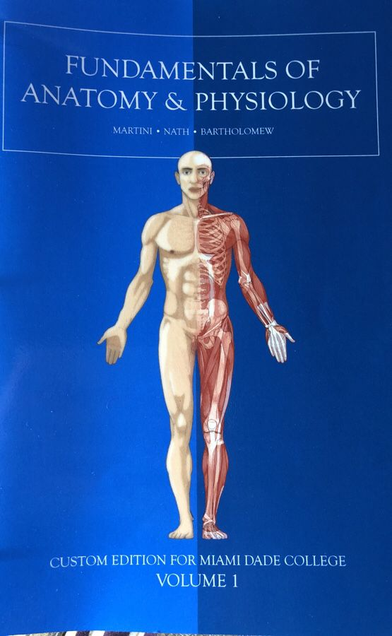 Anatomy and physiology BSC2085 MDC Edition (Books & Magazines) in ...