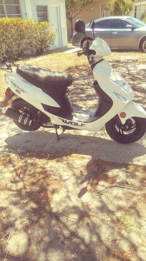 Wolf electric scooter RX 2017