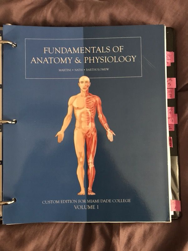 Tolle Anatomy And Physiology Text Books Galerie - Menschliche ...