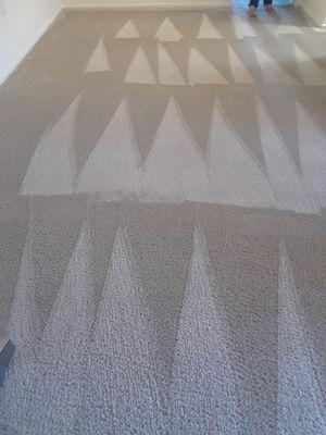 Carpet $30