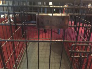 Petco used dog crate 30""