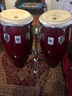 Toca conga drums