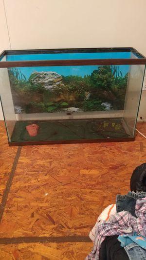 Reptile/ fish