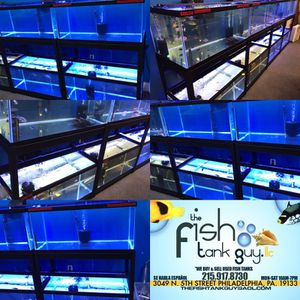closing down fish room, have 4 of the same package deal... 2x 40 gallon breeders, double stand $200
