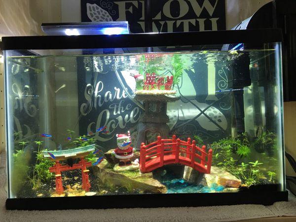 10 gallon Fish Tank Aquascape ( Pet Supplies ) in Fremont, CA ...