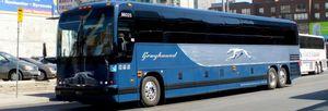 Greyhound Amtrak tickets half off