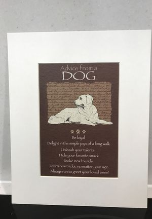 Matted Print advice From a Dog