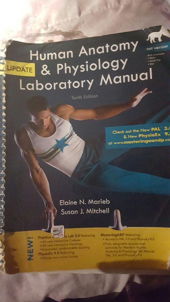 Pcc anatomy and physiology books (Books & Magazines) in Hillsboro ...