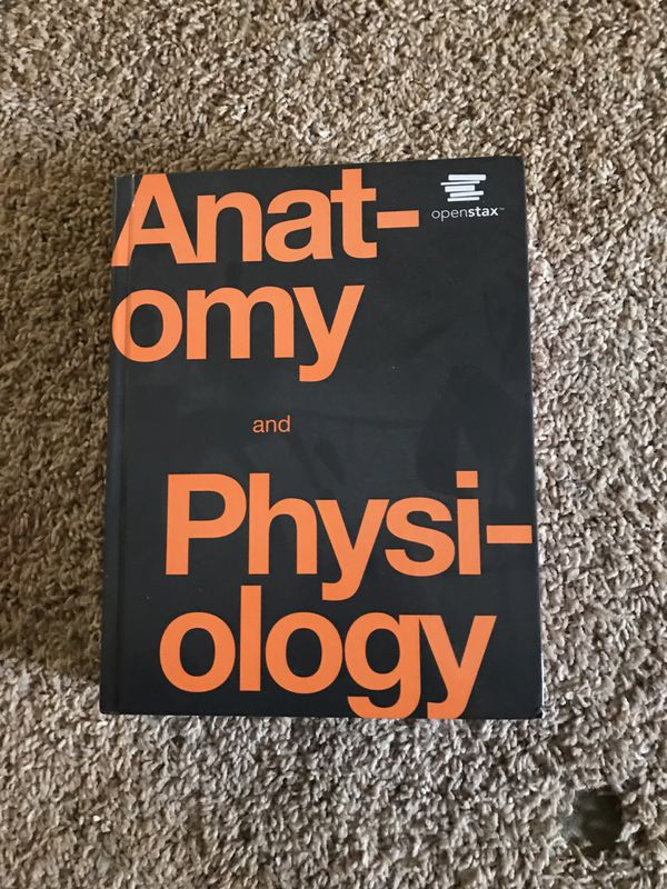 Lujo Openstax Anatomy And Physiology Textbook Componente - Anatomía ...
