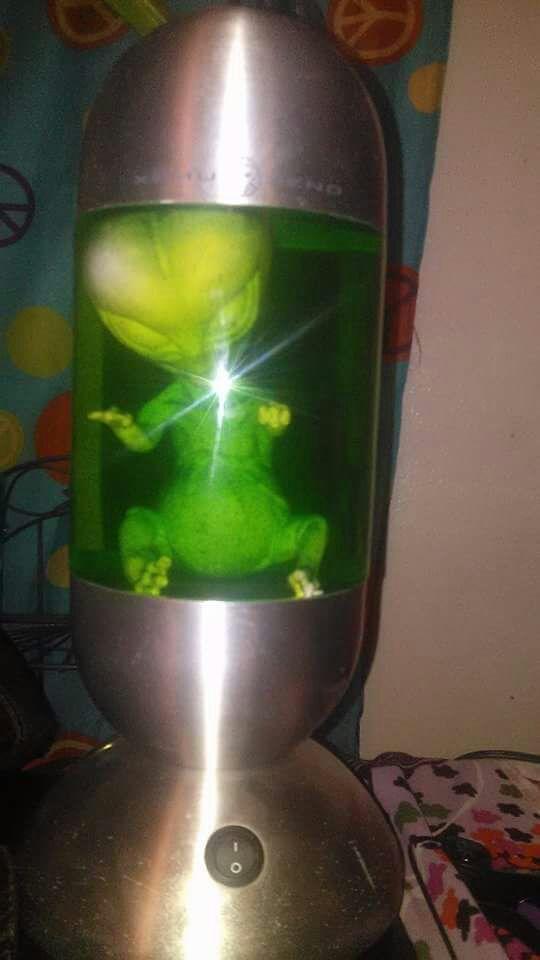 XEMU XENO ALIEN EMBRYO LAMP (Collectibles) in Long Beach, CA - OfferUp