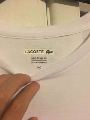 Lacoste brand new t shirt