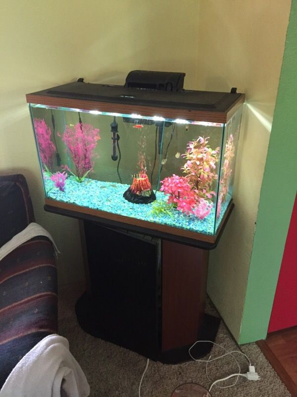 29 gallon fish tank and stand pet supplies in port for 29 gallon fish tank