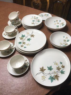Gorgeous stoneware Syracuse Carefree woodbine true glazed porcelain China