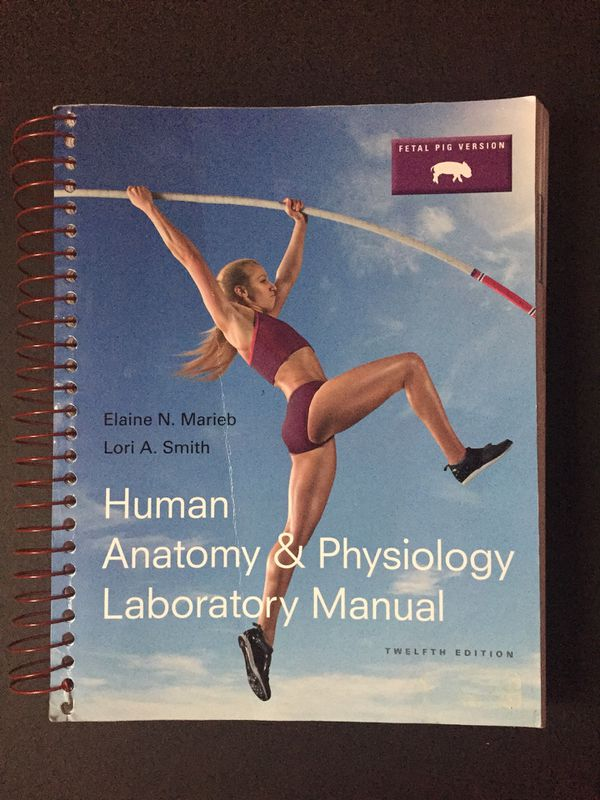 Perfect Human Anatomy And Physiology Lab Manual 12th Edition ...