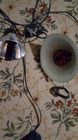 50 wt heat lamp with blacklight