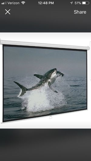 "72"" projector screen"