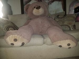Cosco bear