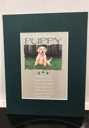 Matted Print advice From a Puppy