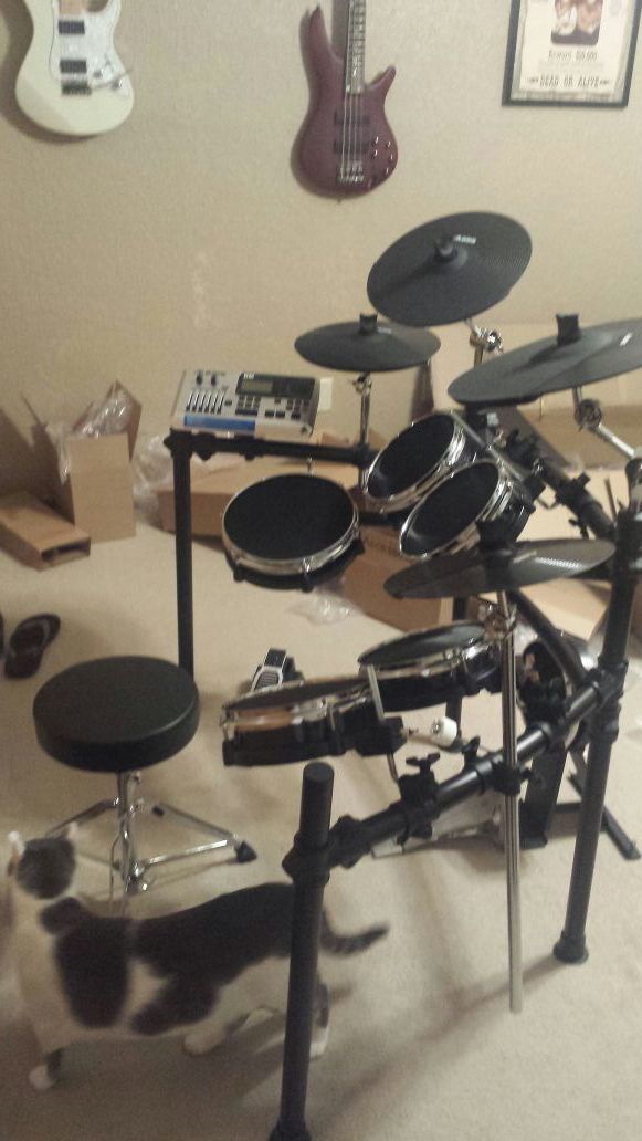 alesis dm10 with mesh heads musical instruments in oklahoma city ok