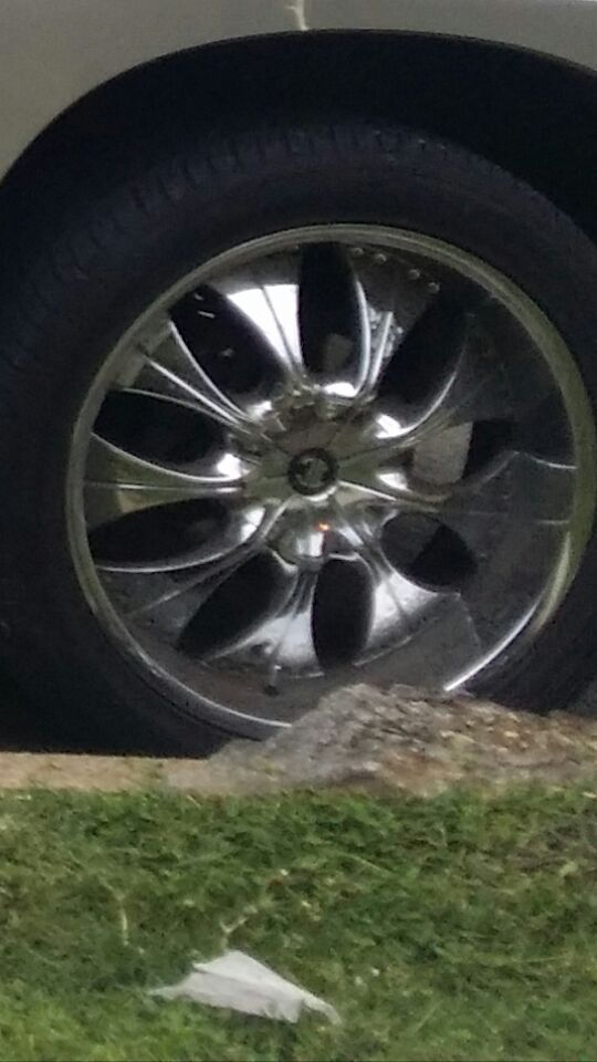 Rim and tire 3 rims