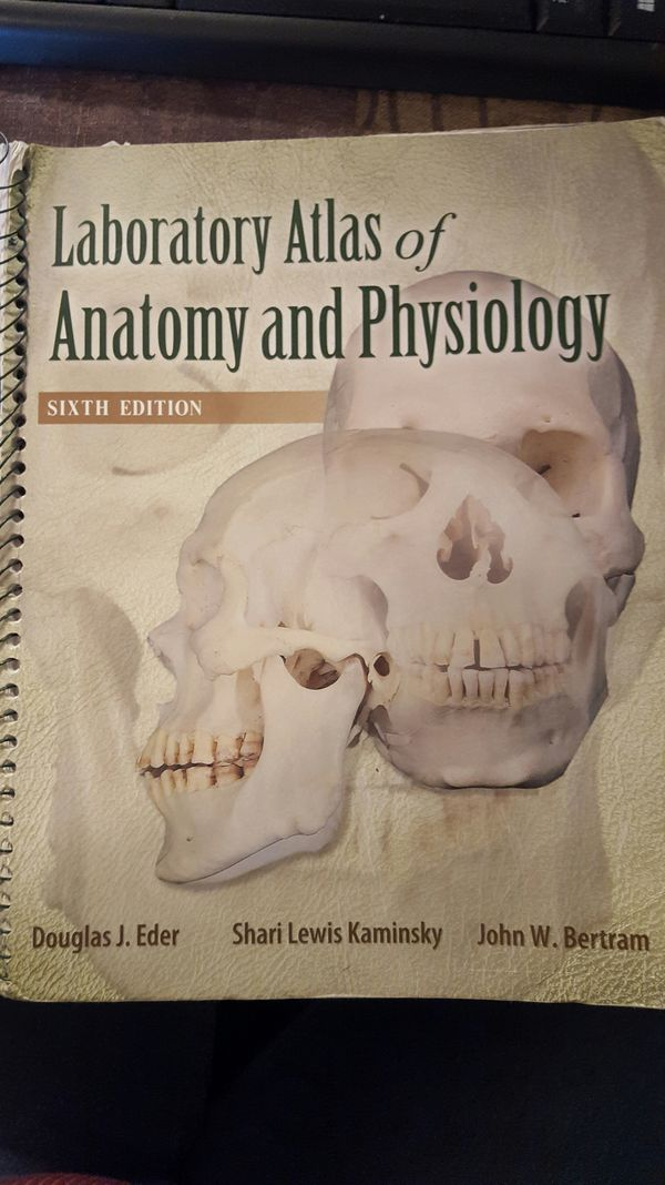 Anatomy & Physiology 7th Ed., w/ Atlas and Connect Subscription ...