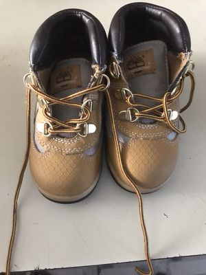 Field Wheat Tims