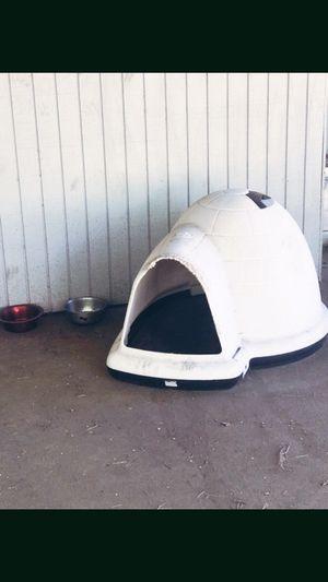 Large dog igloo for sale!!