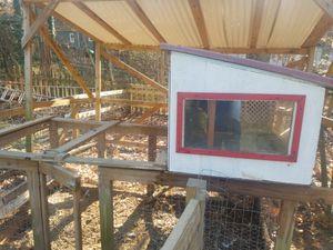 Chicken coop..backyard chickens