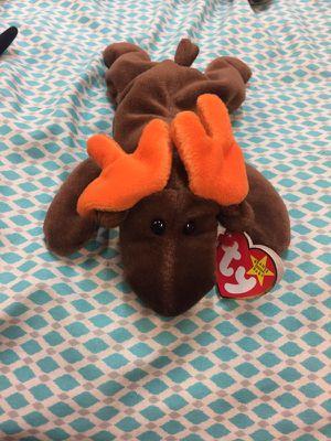 Chocolate Beanie Baby