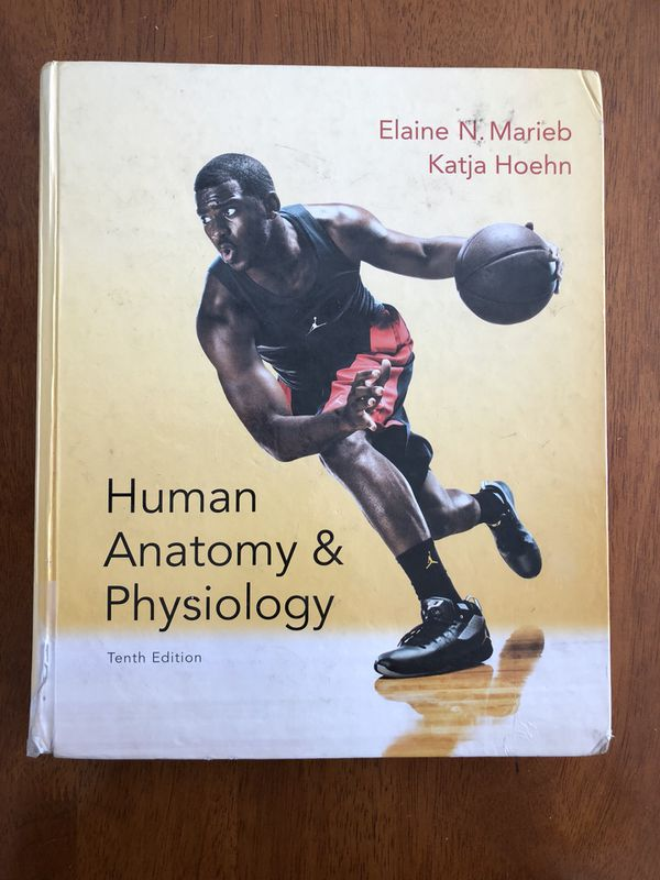 EFSC Eastern Florida State College Human Anatomy & Physiology ...