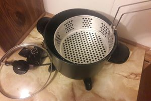 SMALL ELECTRIC FRYER