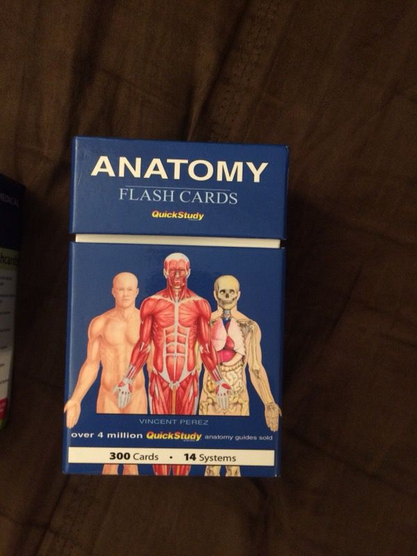 Anatomy Flash Cards Books Magazines In Beaverton Or