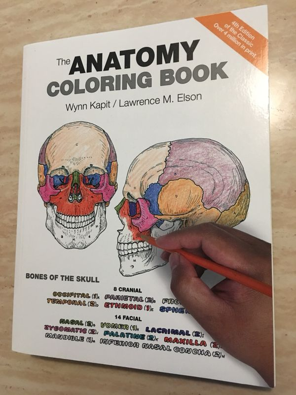 Anatomy/Physiology Coloring Books & Flashcards (Books & Magazines ...