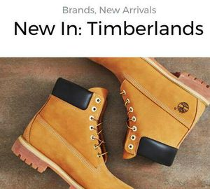 NEW IN: TIMBERLANDS