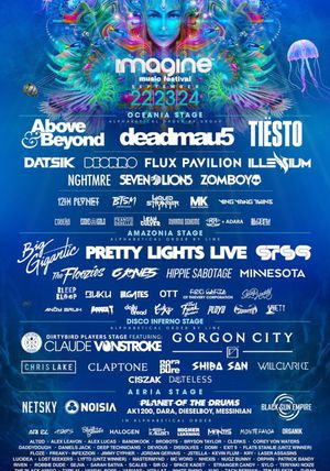 3 day VIP ticket to Imagine Music Festival